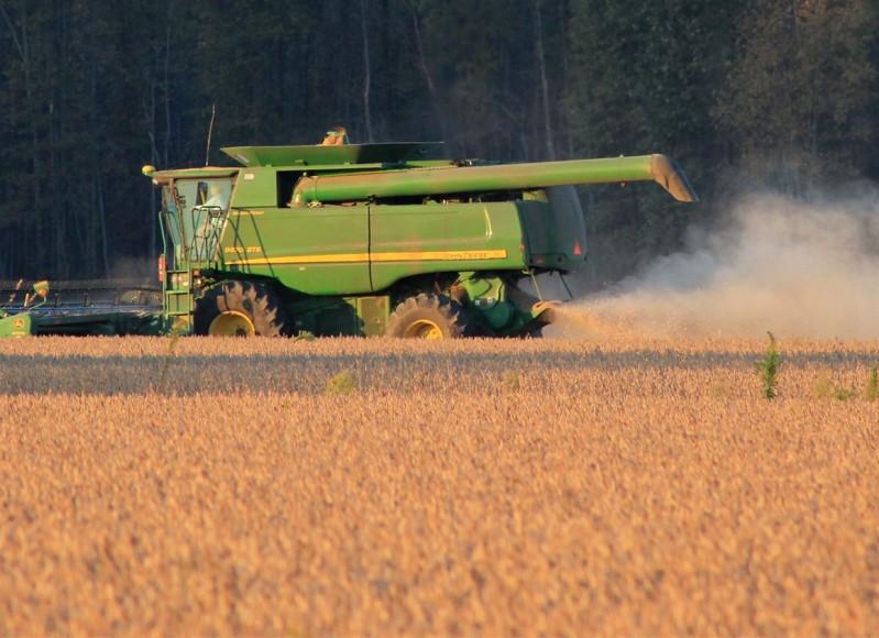 harvest-1033756