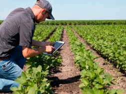tecnologia-agricultura-2
