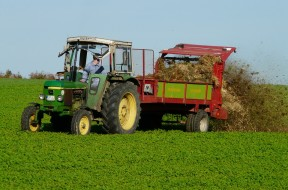 agriculture-62417_960_720