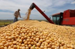 exportação_soja-em-grãos_Valter-Campanato-1024x683