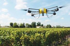 As tecnologias de inteligência artificial, robótica e automação podem ajudar a tornar a produção mais rentável